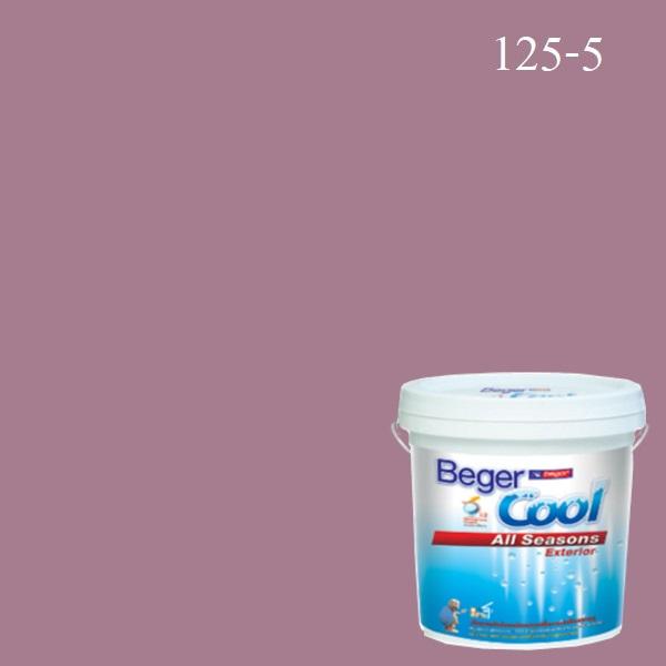 สีน้ำอะครีลิกภายนอก 125-5 Beger Cool All Seasons Nice Smile