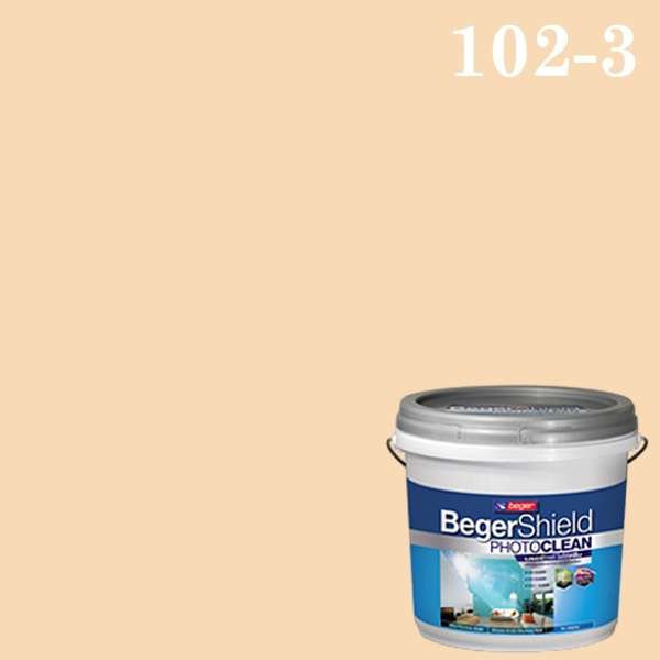 เบเยอร์ชิลด์ โฟโต้คลีน สีขยัน ฟอกอากาศ เช็ดล้างสะอาด ปราศจากเชื้อโรค