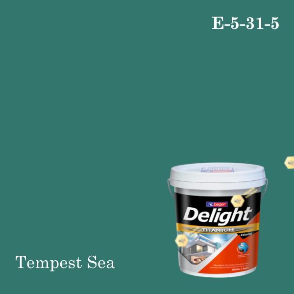 ดีไลท์สีน้ำอะครีลิก ภายนอก E-5-31-5 (Tempest Sea)